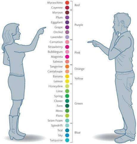 La perception des couleurs chez la femme et chez l'homme
