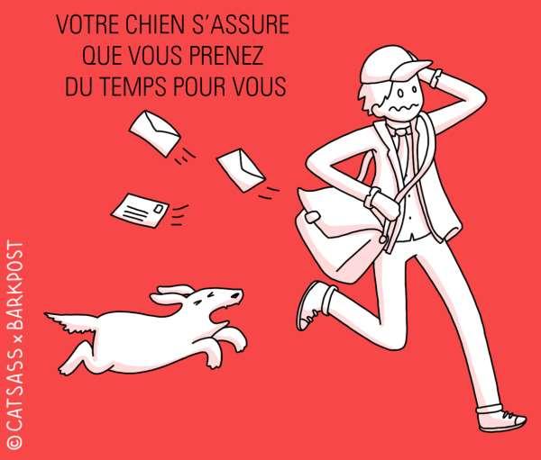 votre chien s'assure de vous prenez du temps pour vous